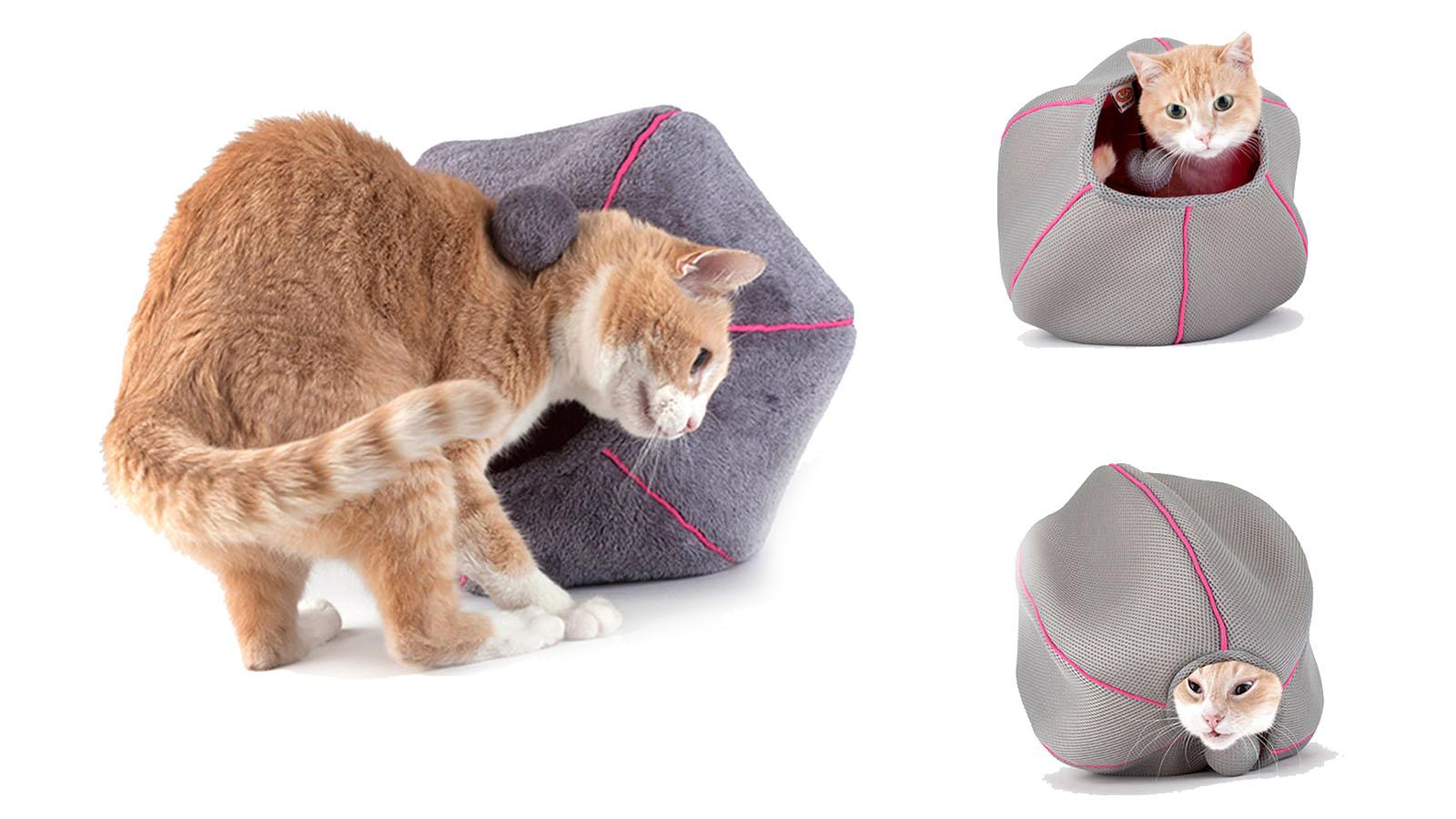 at-cave-colori-prodotto-e-packaging-uniteds-pets
