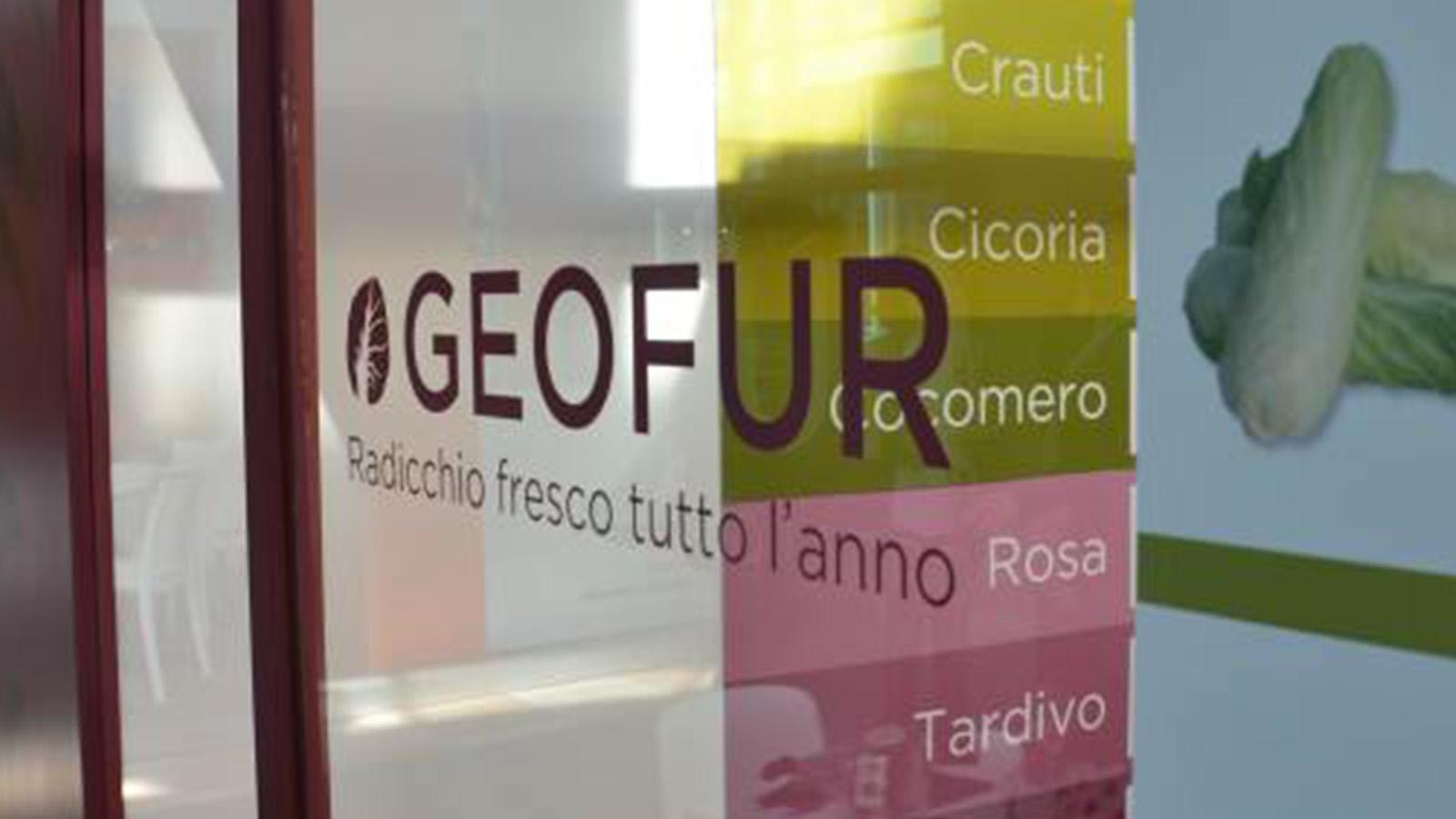 geofur-macfrut-2019-ufficio