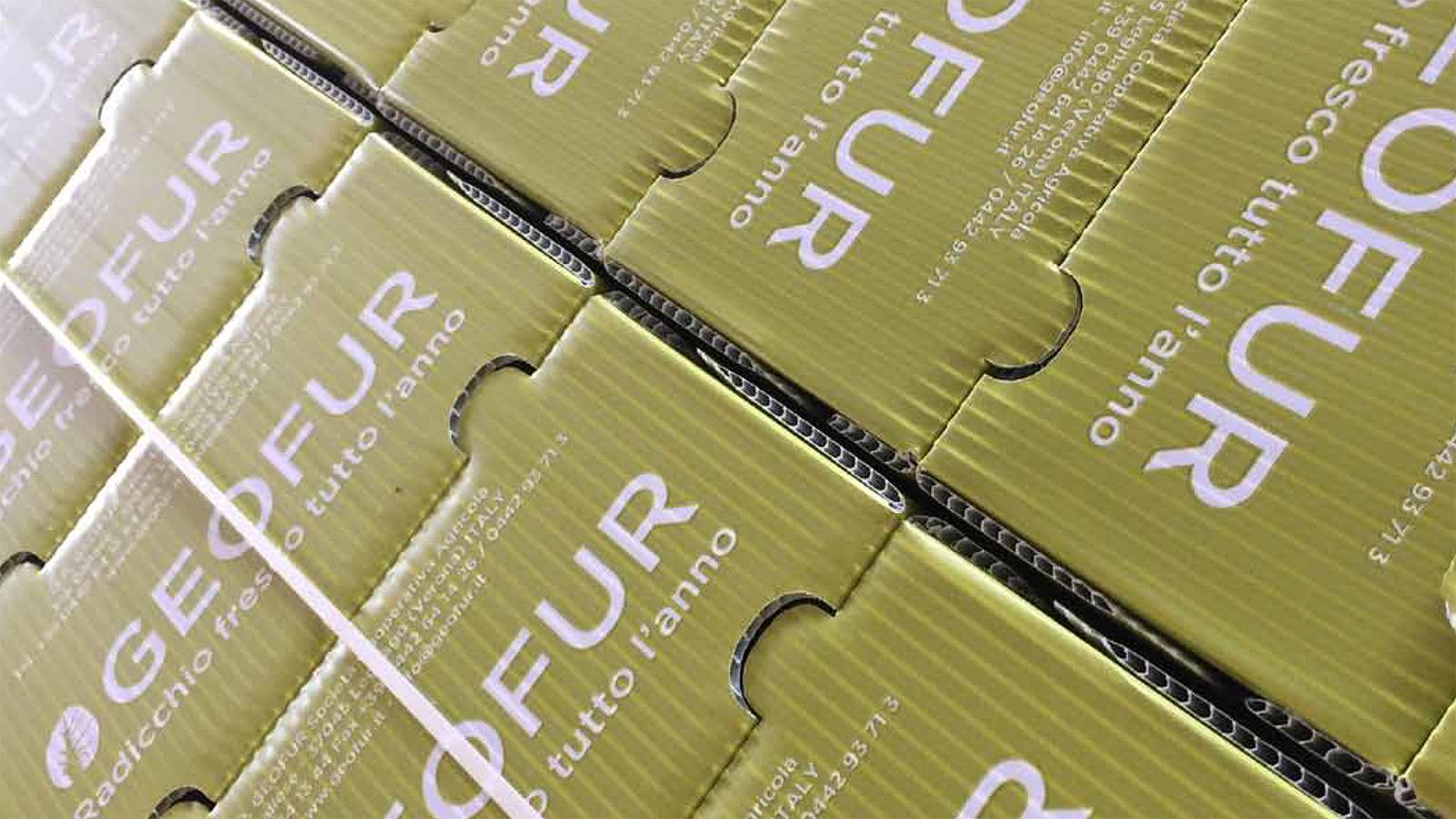 geofur-consulenza-globale-bauletti-foto