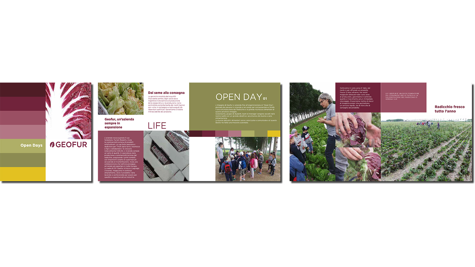 geofur-consulenza-globale-open-day