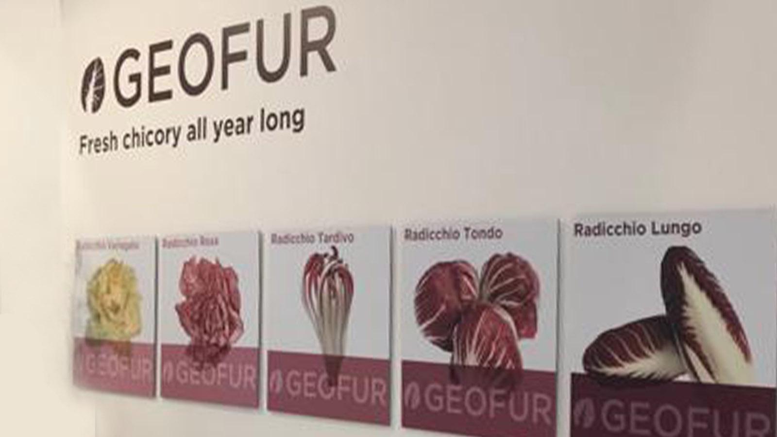 geofur-fruitlogistica-2020-anteprima